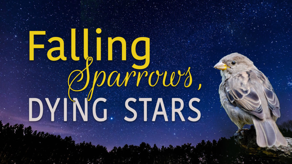 Falling Sparrows, Dying Stars Image