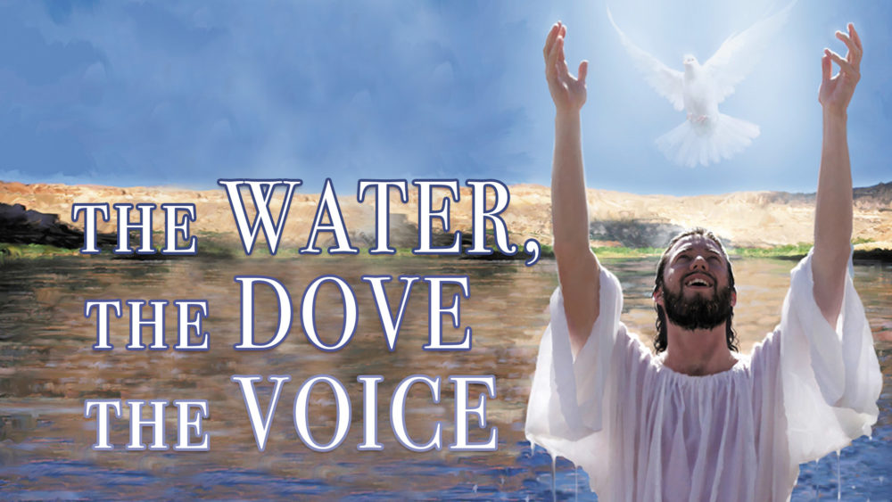The Water, The Dove, The Voice Image